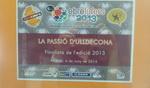 Projecci� cultural per a la Passi� d�Ulldecona